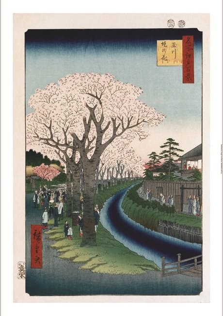 "ANDO HIROSHIGE ""Cherry Blossoms, Tama River"" JAPANESE! various SIZES, BRAND NEW"
