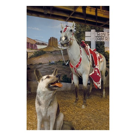 Bullet trigger roy rogers german shepherd CANVAS choose SIZE, from 55cm up, NEW