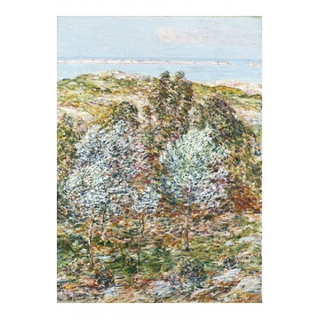 FREDERICK CHILDE HASSAM Springtime Vision NEW CANVAS! various SIZES, BRAND NEW