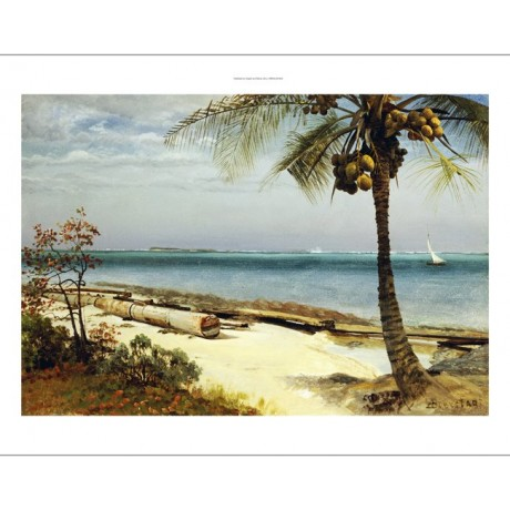 "ALBERT BIERSTADT ""Tropical Coast"" CANVAS seascape choose SIZE, from 55cm up, NEW"