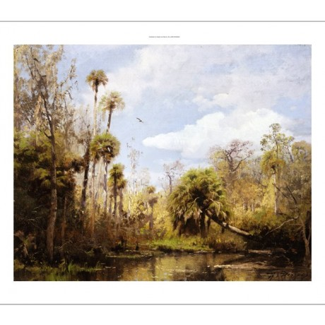"HERMANN HERZOG ""Florida Palms"" SWAMP foliage green birds flying trees CANVAS"