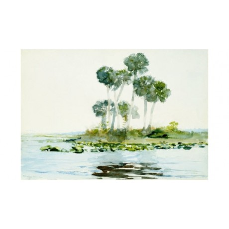 "WINSLOW HOMER ""St. Johns River, Florida"" print NEW choose your SIZE, from 55cm"