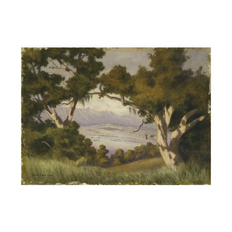 "GEORGE ELBERT BURR ""Hope Ranch"" VISTA Santa Barbara California CANVAS PRINT"