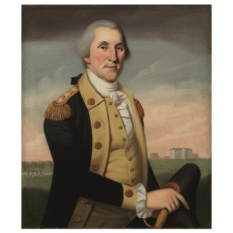 "CHARLES PEALE POLK ""George Washington at Princeton"" PRESIDENT naval NEW CANVAS"