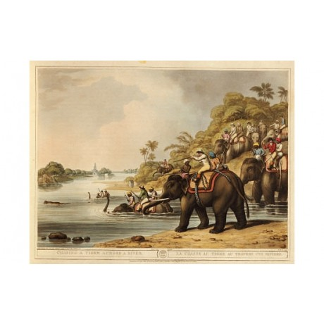 "H MERKE ""Chasing A Tiger Across A River"" Sport PRINT various SIZES available"