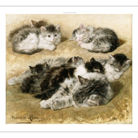 "HENRIETTE RONNER ""Furry Friends"" kittens cat CANVAS various SIZES available, NEW"