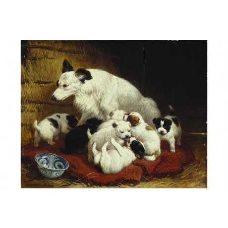 """HENRIETTE RONNER KNIP """"The New Arrivals"""" new CANVAS! various SIZES available"""