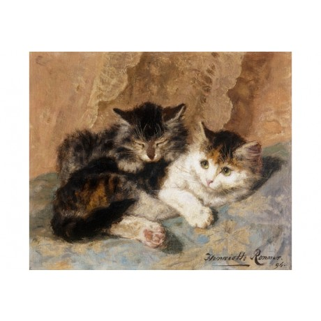 "RONNER-KNIP ""Best Of Friends"" KITTEN cat eyes fluffy sleeping animals NEW PRINT"