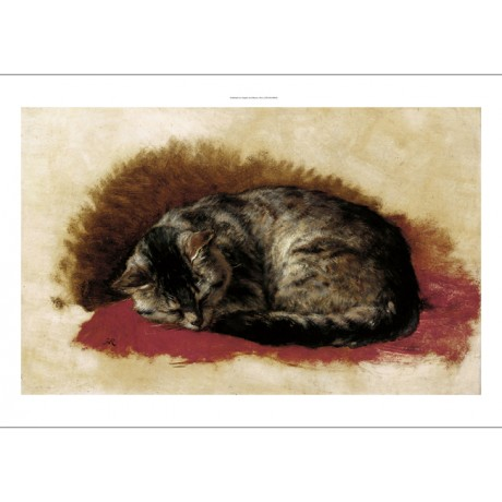 HENRIETTE RONNER-KNIP Sweet Dreams CUTE cat nap asleep kitten NEW CANVAS giclee