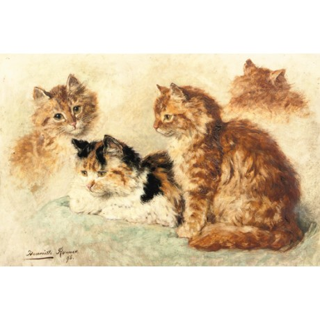 "HENRIETTE RONNER ""Ginger Cats - A Study"" new CANVAS various SIZES available, NEW"