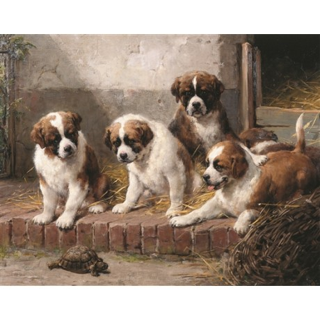 "OTTO EERELMAN ""A Fascinating Encounter"" PUPPIES tortoise humour stable CANVAS"