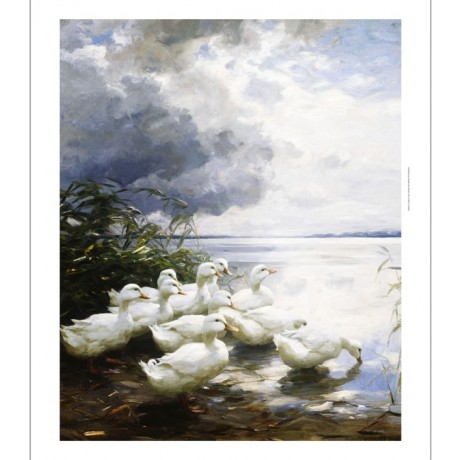 """ALEXANDER KOESTER """"Ducks at the Lake's Edge"""" STORM clouds safety CANVAS PRINT"""