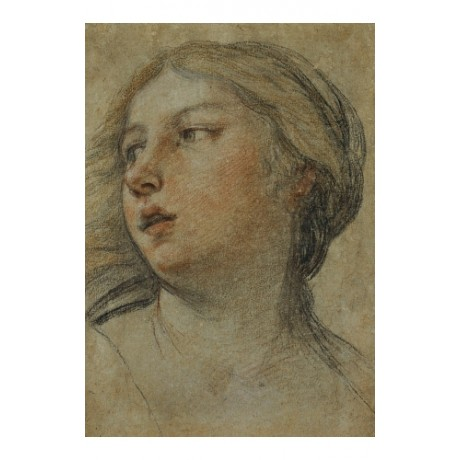 "Canvas print of ""Head of Woman Turned To Left"" MASTERFUL study FRANCESCO ALBANI"