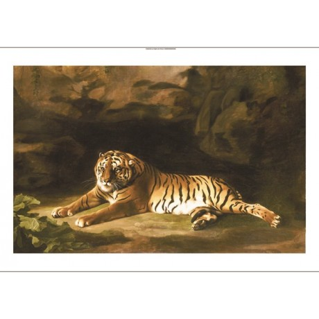 "GEORGE STUBBS ""Portrait Of Royal Tiger"" CANVAS ART ! various SIZES available"