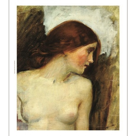 "JOHN WILLIAM WATERHOUSE ""Study Head Of Echo"" Nude PRINT various SIZES, BRAND NEW"