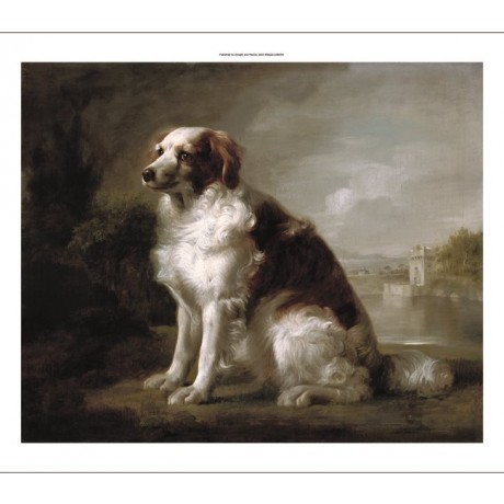 "GEORGE STUBBS ""Red and White Dog in a Landscape"" CANVAS various SIZES, BRAND NEW"
