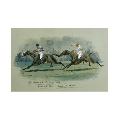 "W. G. LONGE ""University Challenge Whip"" Horse Print various SIZES available"