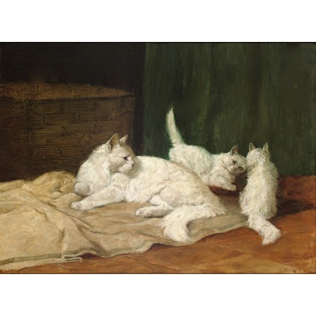 "ARTHUR HEYER ""White Mischief"" cat kittens new on CANVAS various SIZES, BRAND NEW"