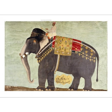 "DECORATIVE CANVAS PRINT ""Elephant"" NEW ON CANVAS choose SIZE, from 55cm up, NEW"