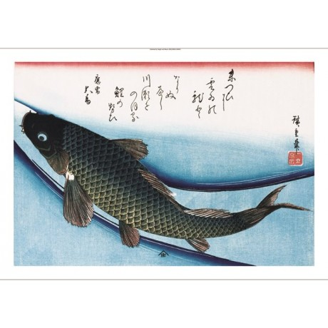 "ANDO HIROSHIGE ""Carp"" FISH print BROWSE our eBay shop! various SIZES, BRAND NEW"