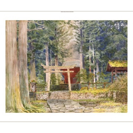 "IOKI BUNSAI ""Stone Road To A Shrine"" JAPANESE canvas! various SIZES, BRAND NEW"