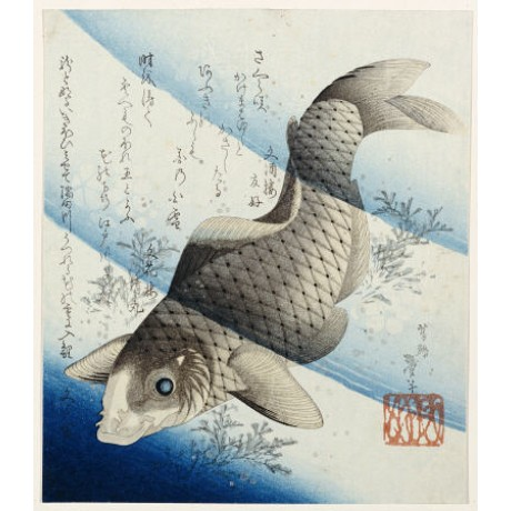 "KATSUSHIKA TAITO II ""Carp Among Aquatic Leaves"" print various SIZES, BRAND NEW"