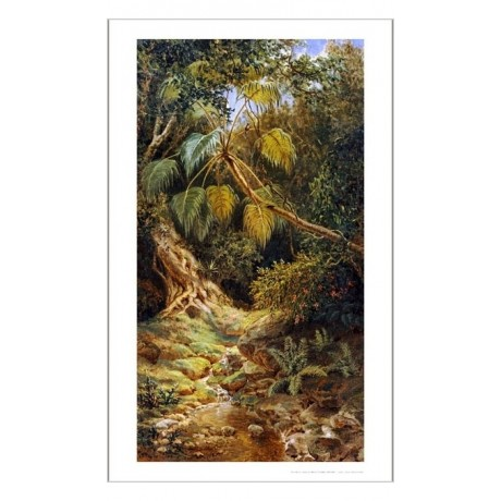 "ESTEBAN CHARTRAND ""Jungala Cubana"" Landscape ON CANVAS various SIZES, BRAND NEW"