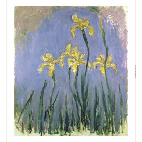 "CLAUDE MONET ""Yellow Irises"" Art CANVAS EDITION choose SIZE, from 55cm up, NEW"