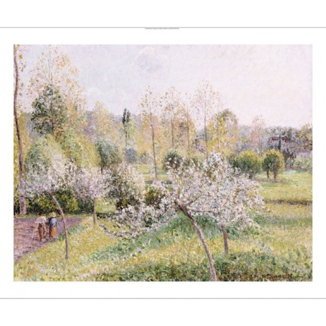 "CAMILLE PISSARRO ""Apple Trees In Blossom"" print new various SIZES available, NEW"