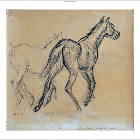 """EDGAR DEGAS """"Horses"""" print NEW ON CANVAS choose SIZE, from 55cm to X LARGE, NEW"""