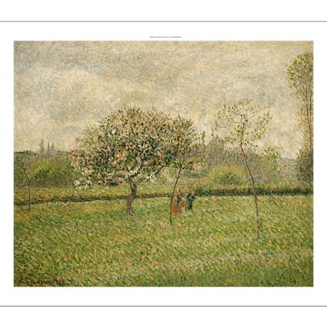 "CAMILLE PISSARRO ""Apple Tree Blossom"" PRINT new choose SIZE, from 55cm up, NEW"