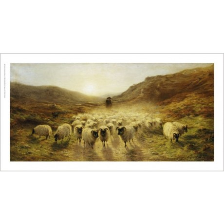 "JOSEPH FARQUHARSON ""Leaving Hills"" Sheep ON CANVAS choose SIZE, from 55cm up"