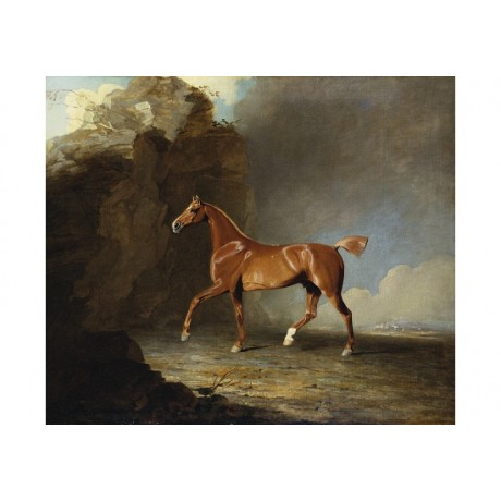 """BEN MARSHALL """"Golden Chestnut Racehorse"""" new CANVAS! various SIZES available"""