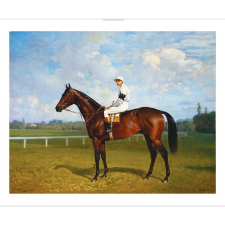 EMIL ADAM Racehorse, 'Northeast' With Jockey new CANVAS various SIZES, BRAND NEW