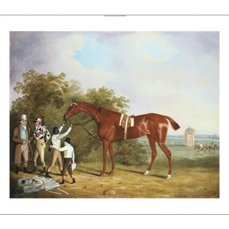 CLIFTON TOMSON Atisidora, Winner Of The St Leger CANVAS various SIZES, BRAND NEW