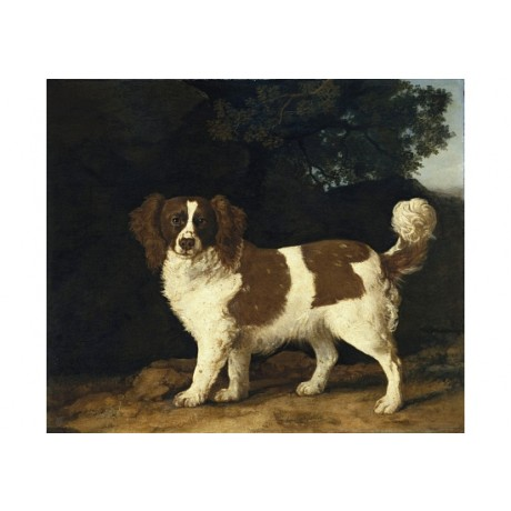 GEORGE STUBBS Fanny, Spaniel in Wooded Landscape CANVAS various SIZES, BRAND NEW