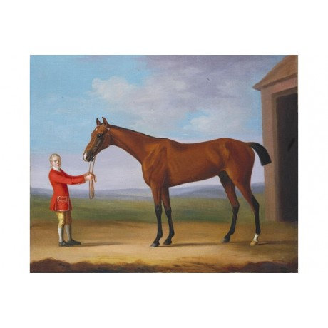 "FRANCIS SARTORIUS ""Sir Patrick Blake's Bay Colt"" CANVAS various SIZES, BRAND NEW"