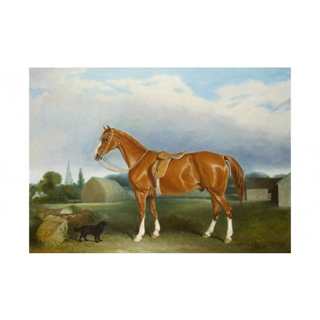 "JOHN FERNELEY SR ""Chestnut Hunter And A Spaniel"" CANVAS various SIZES, BRAND NEW"
