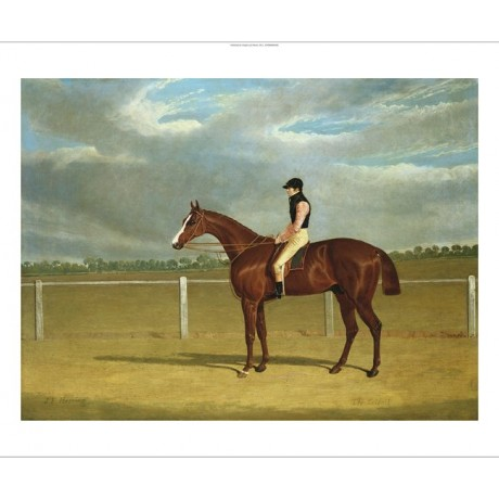 "JOHN FREDERICK HERRING ""The Racehorse The Colonel"" NEW! various SIZES, BRAND NEW"