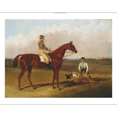 "JOHN FREDERICK HERRING ""Barefoot, The Racehorse"" CANVAS various SIZES, BRAND NEW"
