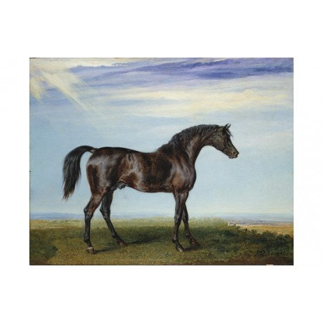 "JAMES WARD ""Smolensko"" HORSE print SEE OUR EBAY SHOP! various SIZES, BRAND NEW"