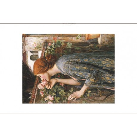 "WATERHOUSE ""Soul Of Rose"" pre-raphaelite CANVAS print! various SIZES, BRAND NEW"