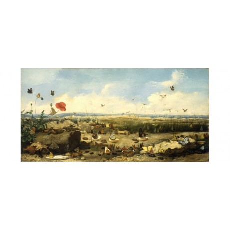 DONEAUD Race Butterflies FLYING horizon poppy cloud sky landscape CANVAS PRINT