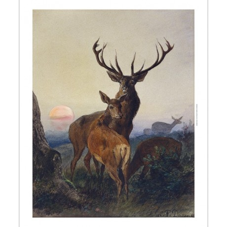 "DEIKER ""Stag With Deer Wooded Landscape Sunset"" ANTLERS wild CANVAS PRINT"