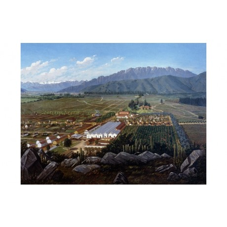 "DANIEL ESCOBAR ""Vineyard Chile"" CULTIVATION fields mountain rooftop sky CANVAS"
