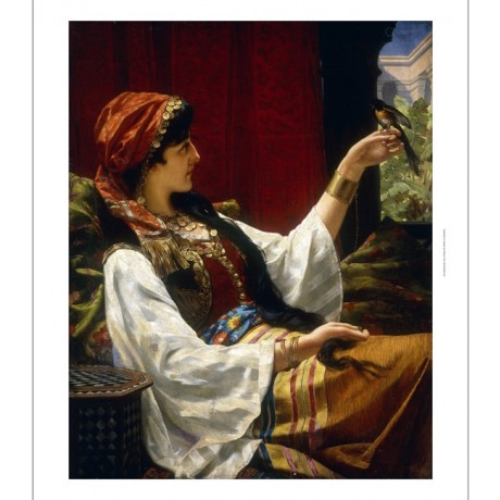 "JAN PORTIELJE ""HAREM Beauty Holding Bird"" GENTLE curtain headscarf NEW CANVAS"