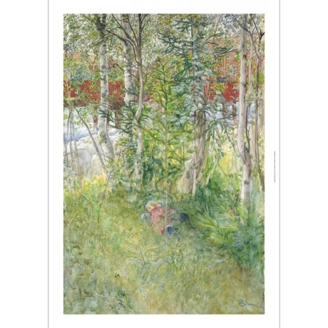 "CARL LARSSON ""A Nap Outdoors"" print ON CANVAS choose your SIZE, 55cm to X LARGE"