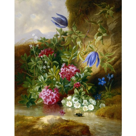 JOSEF SCHUSTER Alpenblum BRIGHT alpine flowers insect purple pink CANVAS PRINT