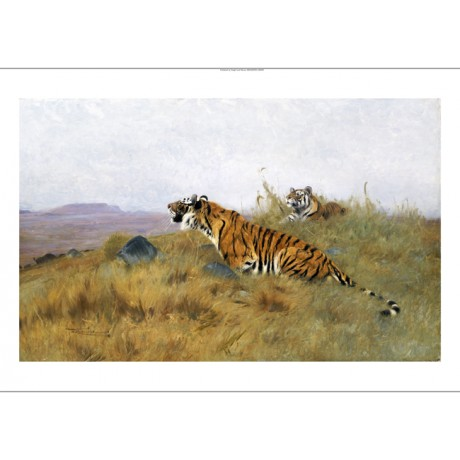 "WILHELM KUHNERT ""Tigers Stalking Their Prey"" Landscape various SIZES, BRAND NEW"