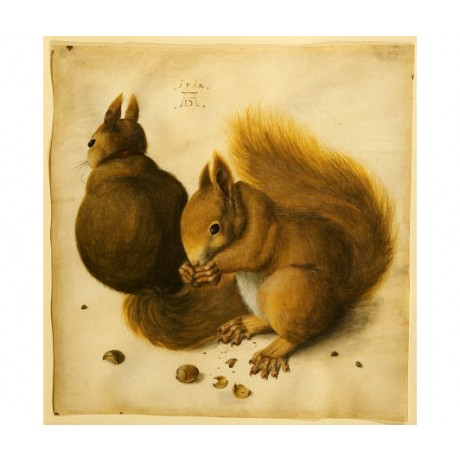 "HANS HOFFMANN ""Two Squirrels"" animals ON CANVAS choose SIZE, from 55cm up, NEW"